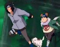 Kiba dan Choji