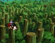 Temari dan Kyaku diantara pepohonan tumbang