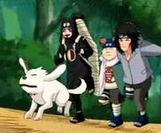 Kankurou, Kiba dan Choji