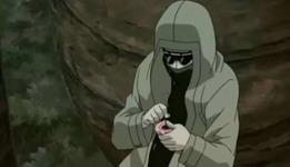 Shino berusaha membelah shoton agar kikaichuunya selamat