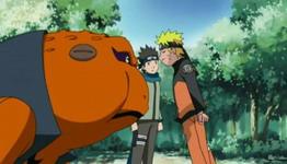 Konohamaru melerai Naruto dan Gamakichi