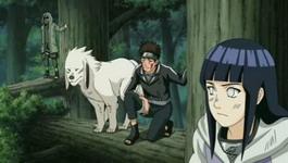 Hinata, Kiba dan Akamaru