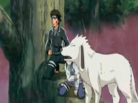 Kiba, Hinata dan Akamaru
