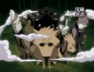 Anjing ninja yang dipanggil Kakashi