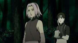 Sakura dan Sai