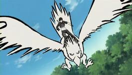 Sai menyerang dari burung tinta