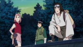 Sakura, Lee, Neji