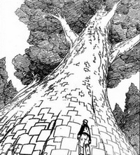 Pohon kertas